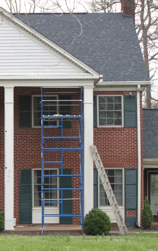 scaffold cropped